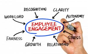 Employee-Recognition-Program-300x184